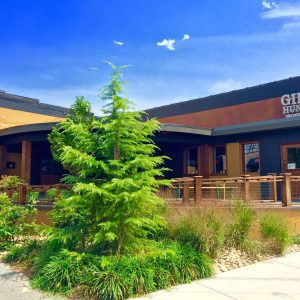 New year, new location: Gibb's Hundred partners with GRAWL
